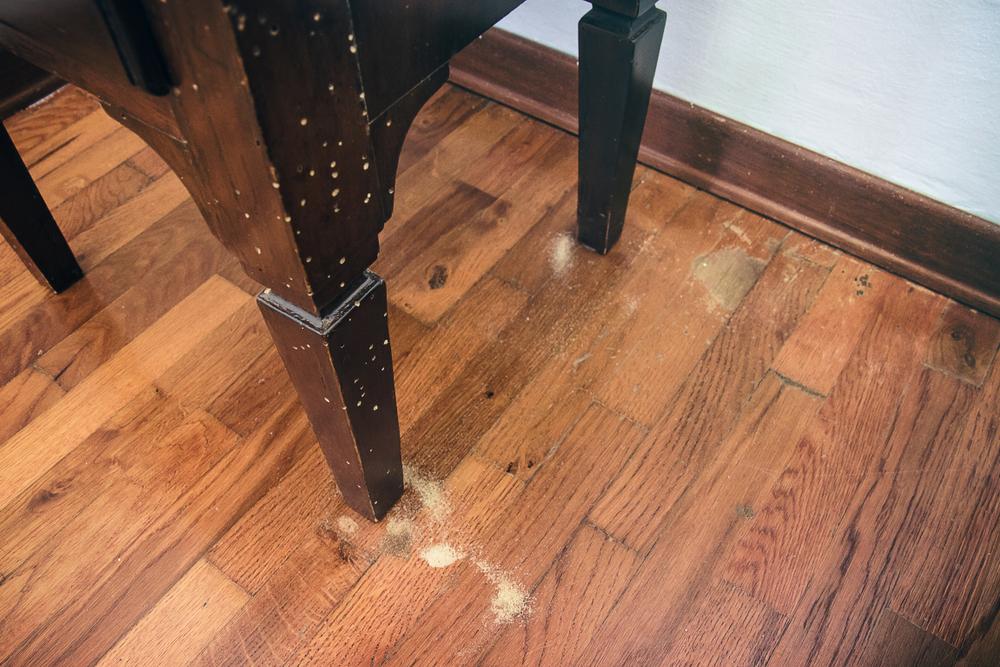 houtworm in meubels